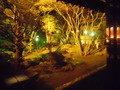 1階の庭園の夜景