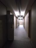 部屋の入口までの通路です