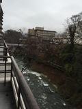 川のすぐそば