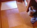 脱衣場の床