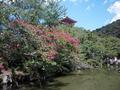 清水寺の庭園