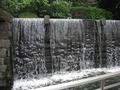 入口脇の滝