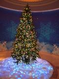 ホテルロビーにあるクリスマスツリー