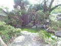 旅館の庭の池