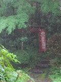 庭の、稲荷大明神のぼり
