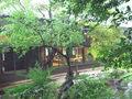 源氏館の裏庭