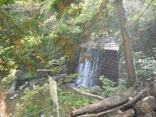駐車場から見える滝