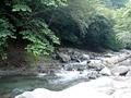 敷地内に流れる川