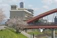 桜・船小屋温泉大橋