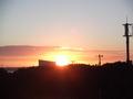 夕日が見えました