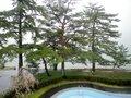 静かな琵琶湖が楽しめる宿