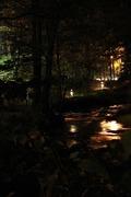 ハルニレテラス 散歩道(夜景)
