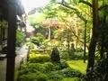 宝善院、庭園