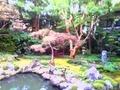宝善院/庭園