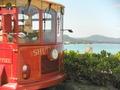 赤バス、めっちゃ可愛いっ♪