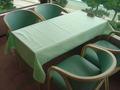 薄いグリーンのテーブルクロス