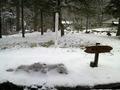 雪景色でした!