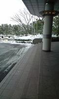 年末大雪でした