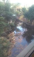 ロビーから見える庭園