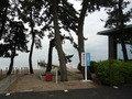 竹生島行き観光船乗り場