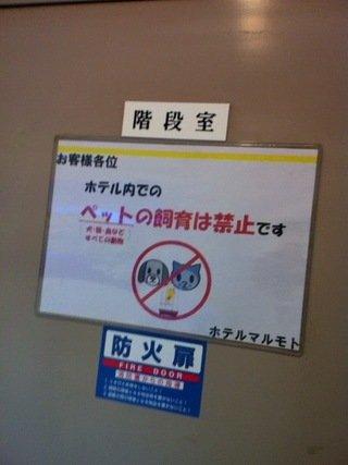 ホテルでペットの飼育禁止