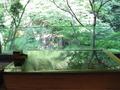 緑と滝が見える貸切風呂