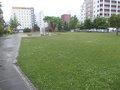 静かな公園もあります