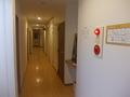 客室階(3F)通路の様子
