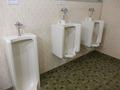 共同トイレ(男子小用)