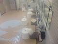 大浴場・洗い場の様子