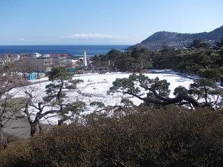 函館公園も近くにあります