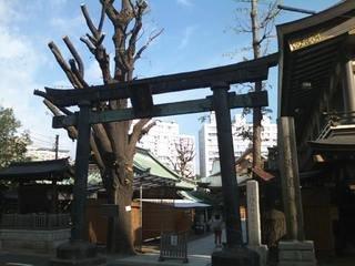 湯島神社がすぐ近くです