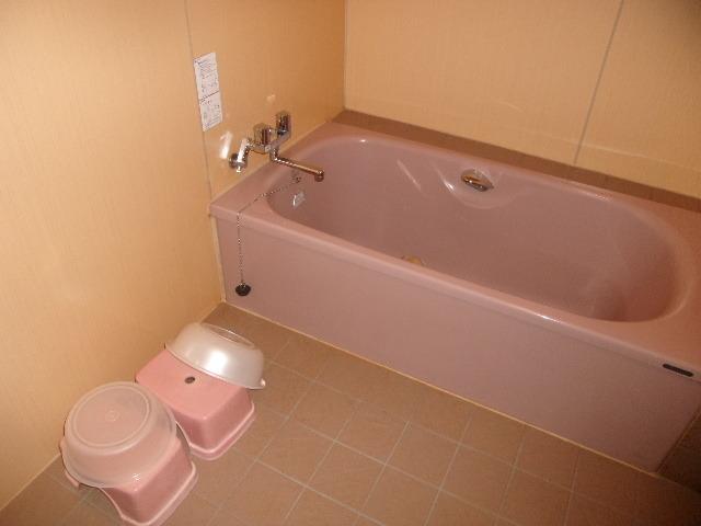 共同浴室内の浴槽の様子