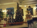 サンマリーナホテルのクリスマスツリー