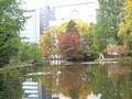 旧道庁赤煉瓦庁舎の池