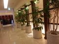 JRタワーホテル日航札幌 スカイスパに続く廊下
