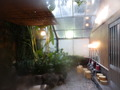 ジャングル風呂の様子