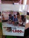 ドクターフィッシュ