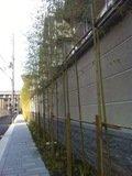 ホテルの壁周りは竹