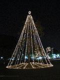 クリスマスツリーのお出迎え