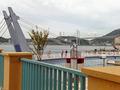 展望デッキから見る2本の橋