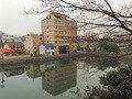 福井城からフクイキャッスルを望む