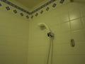 シャワーの出が・・・