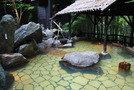 竹林に囲まれた露天風呂でのんびり