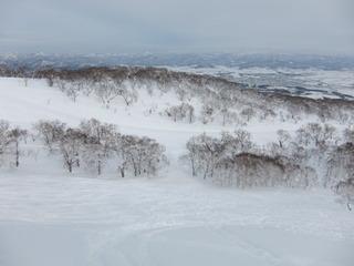 コテージ近隣にあるスキー場の様子