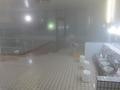 ホテル温泉の様子
