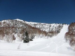宿もよりのスキー場の様子