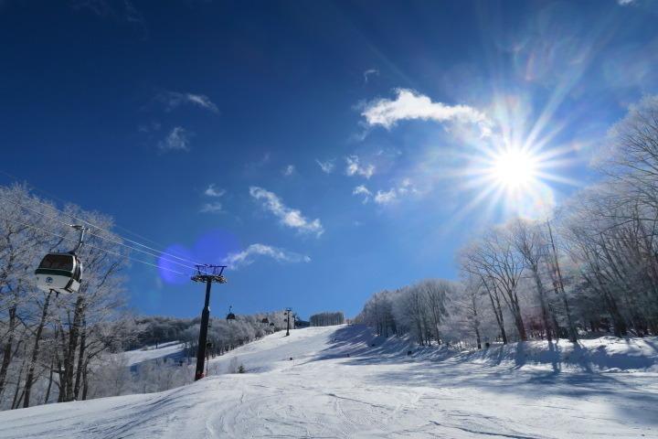 白樺高原国際スキー場の様子