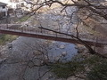 虹の架け橋からの景色