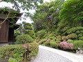 芳泉の庭から本館にいく道